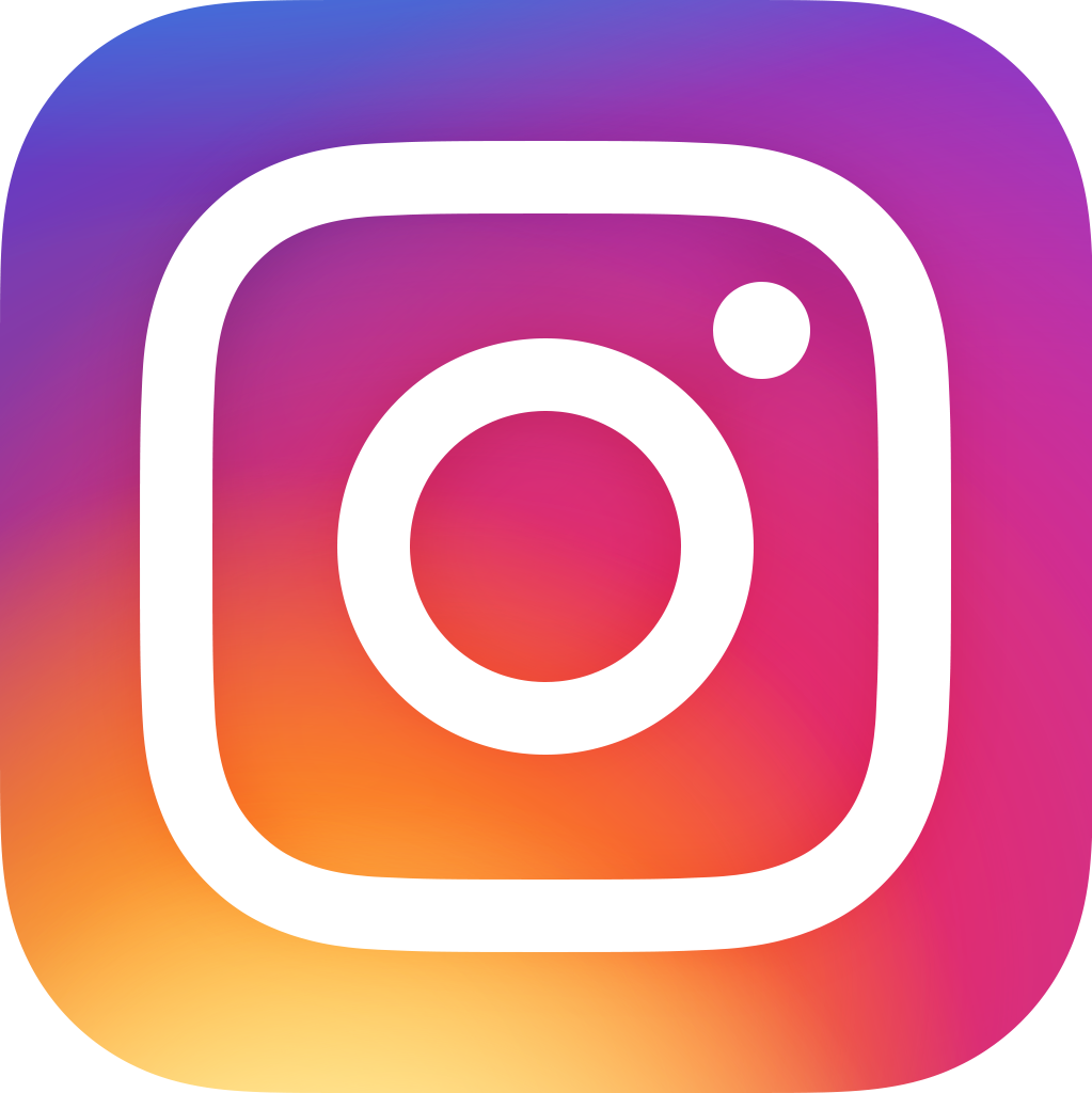 Instagram 2016 icon